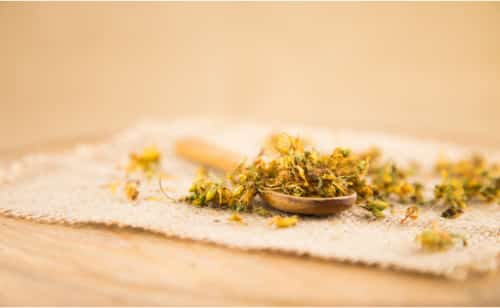 Getrocknete Johanniskraut Blüten
